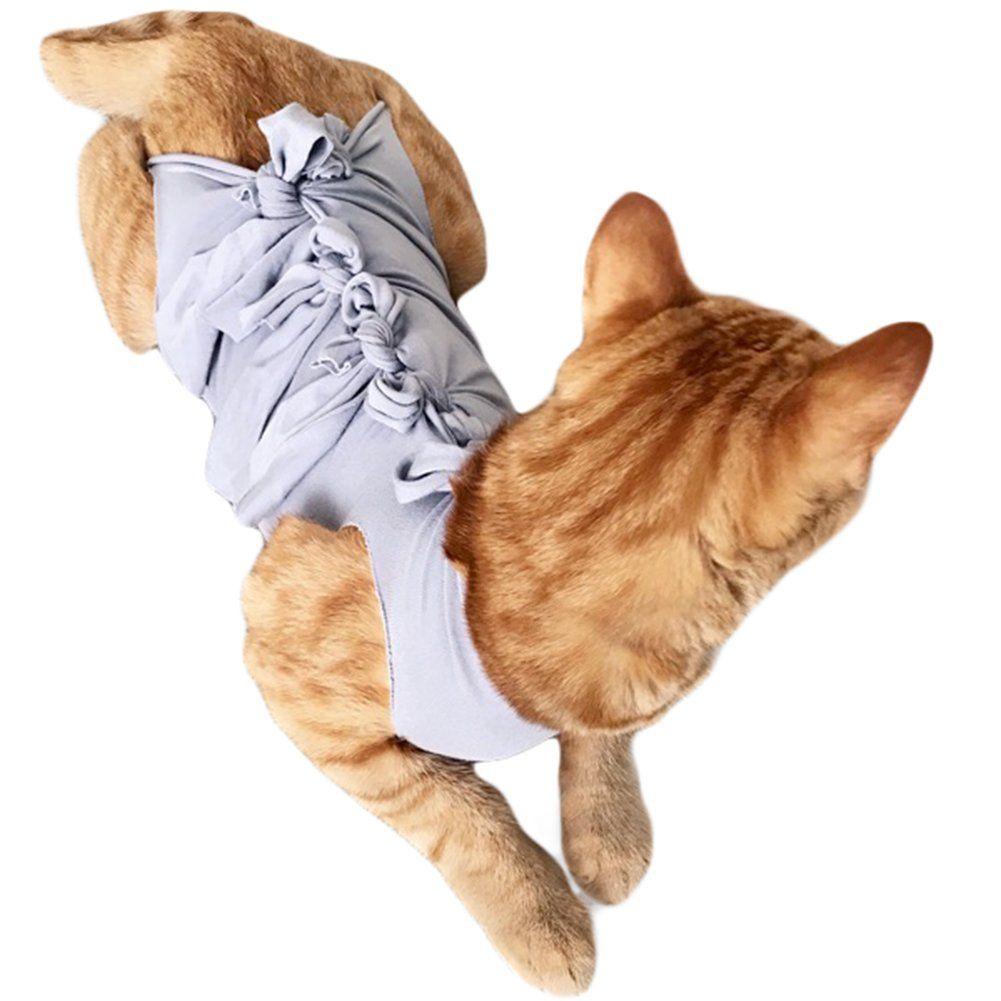 Pin En Cat Collar