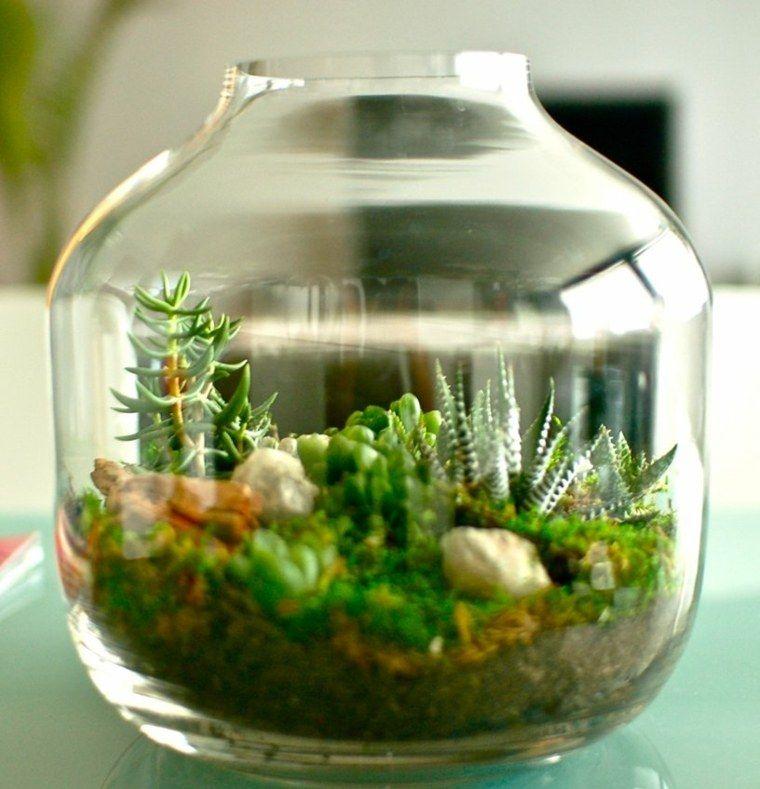 terrarium d coratif fabriquer soi m me terrarium plantes et fleurs bocaux. Black Bedroom Furniture Sets. Home Design Ideas