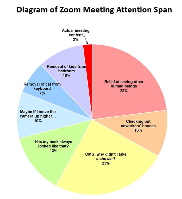 Burlington Resident S Zoom Meeting Meme Goes Viral Meeting Memes Meetings Humor Attention Span