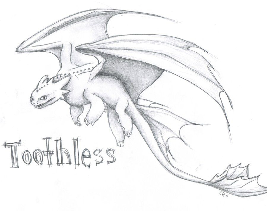 Dragon Sketches And Drawings Toothless By Aussies10 Dragon