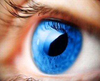 pupila - Pesquisa Google
