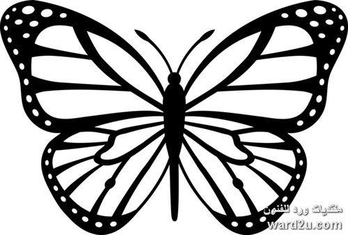 فراشات استنسل و مجسمة زينة الحوائط Butterfly Clip Art Butterfly Stencil Butterfly Coloring Page