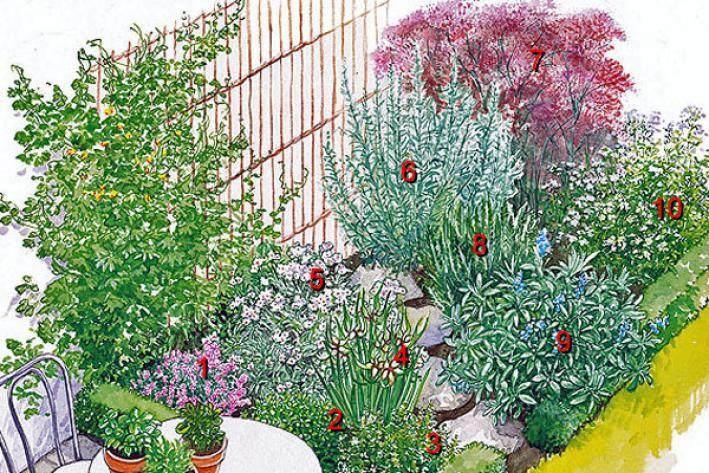 Zwei Kräuterbeete zum Nachpflanzen Vegetable garden, Garten and - garten selbst gestalten tipps