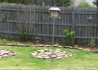 Stone Under Bird Feeder Outdoors Bird Feeders House Yard