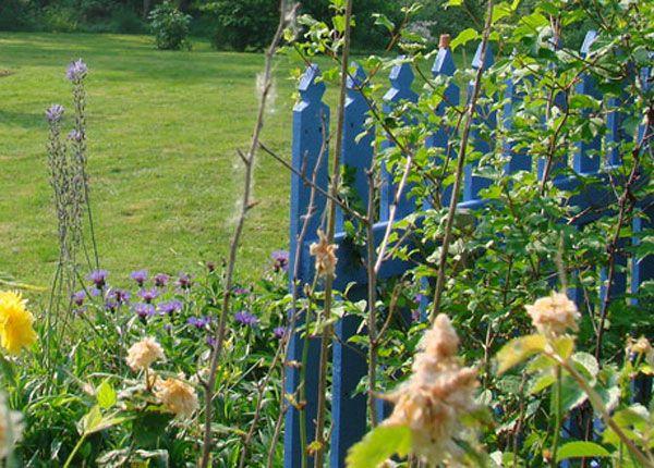Barri re en bois bleue dans le jardin blue gate in the for Cendre de bois dans le jardin