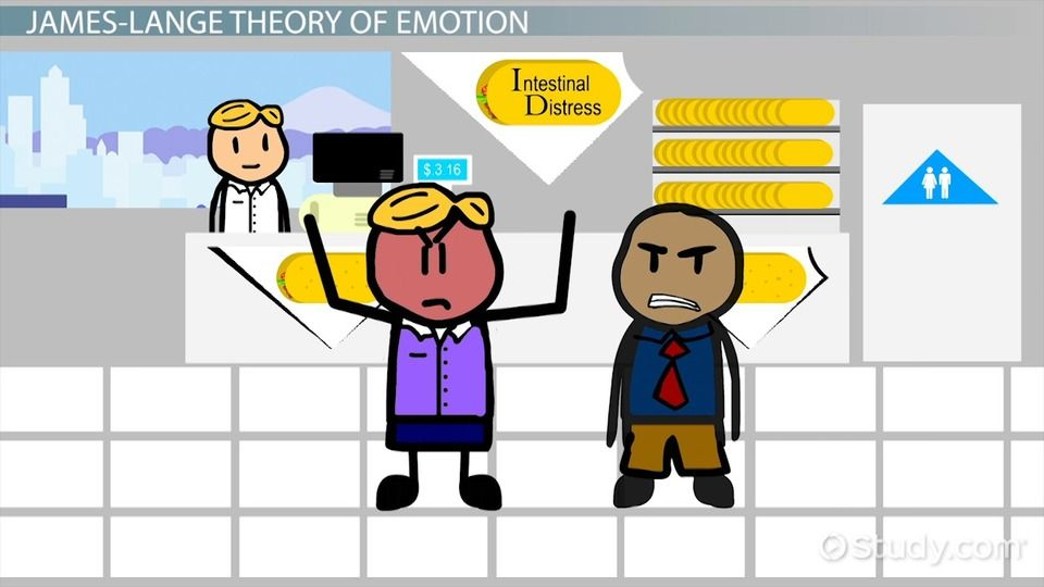 In this lesson, we'll discuss the James-Lange theory of emotion proposed by William James and Carl Lange. Learn about emotions and the James-Lange...