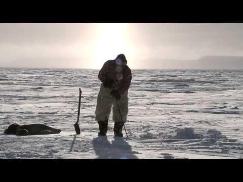 video inuit and polar bears nanuq youtube noordpool. Black Bedroom Furniture Sets. Home Design Ideas