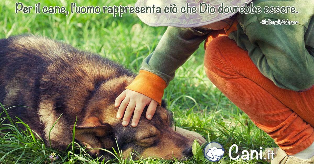 Bagno Cane ~ Per il cane l uomo rappresenta ciò che dio vorrebbe essere ni