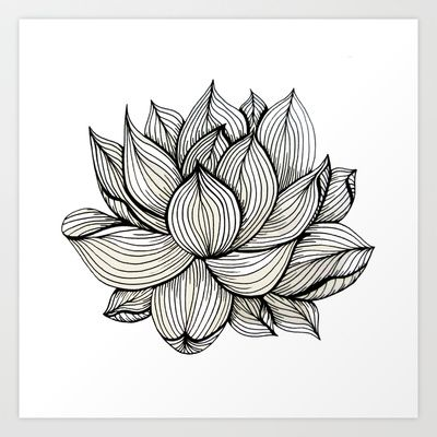 Lotus flower black and white nature organic design drawing abstract