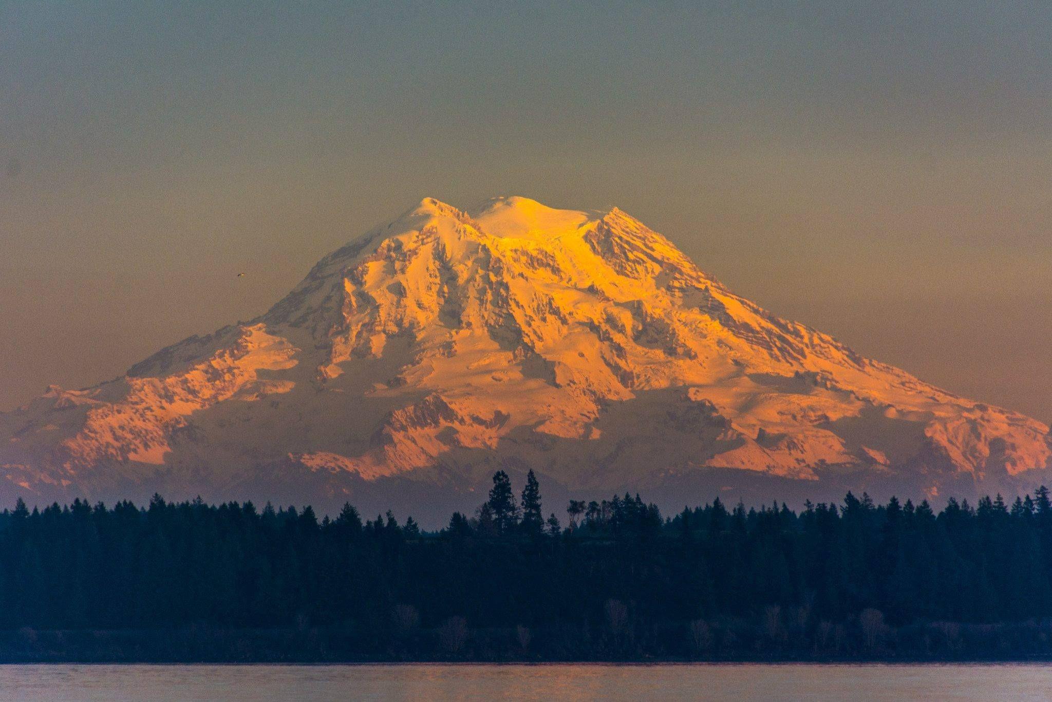 Sunset On Mt Rainier Olympia Wa Mountain Paintings Rainier Mount Rainier