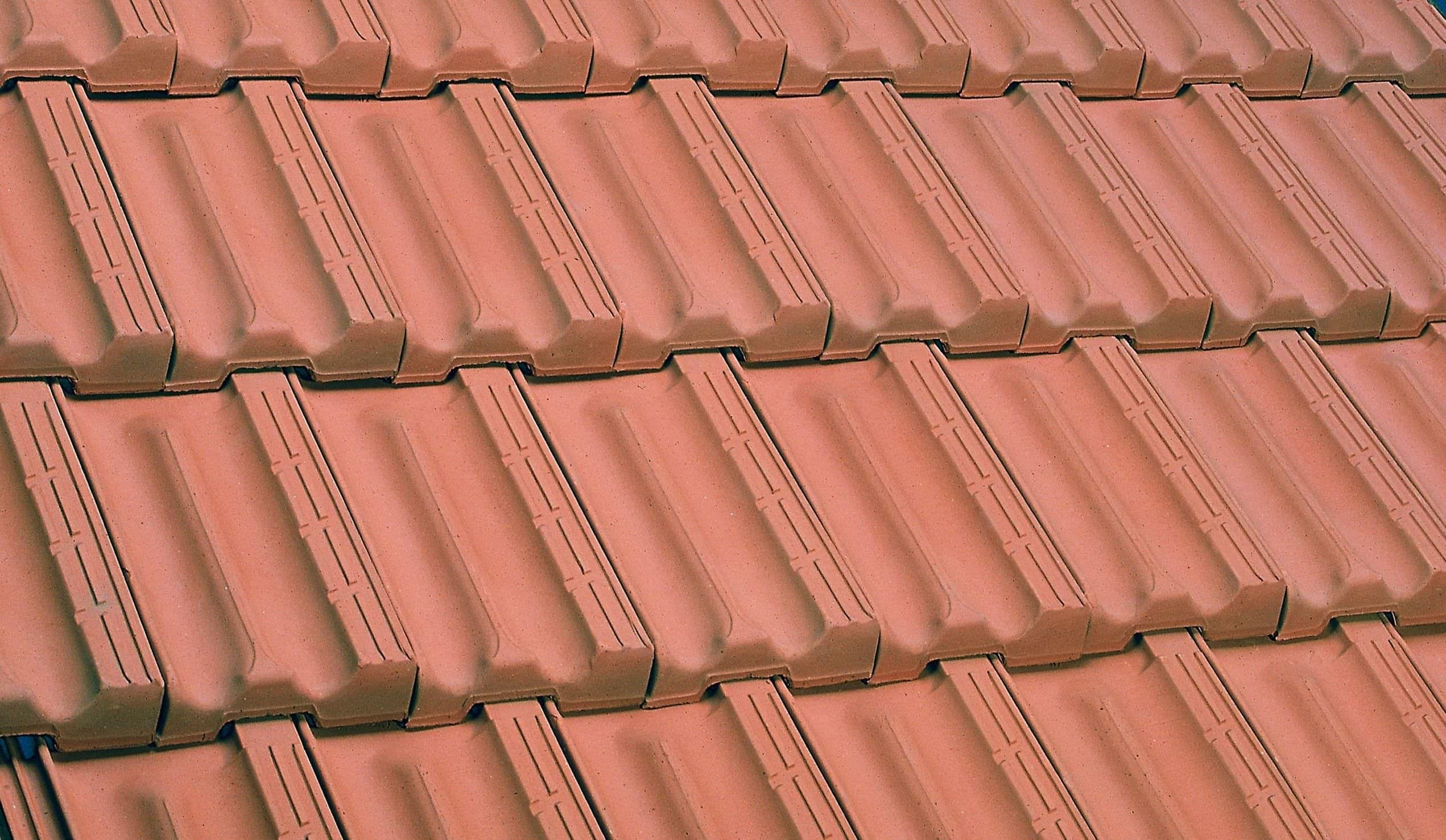 Roof Repair Sydney In 2020 Terracotta Roof Tiles Roof Repair Roof Tiles