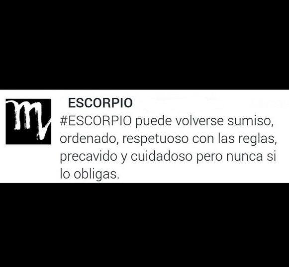 #SCORPIO #SIGN #ZODIAC #ESCORPIO #SIGNO #ZODIACO