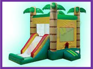 Our 15x22 Jungle Fun Bounce House