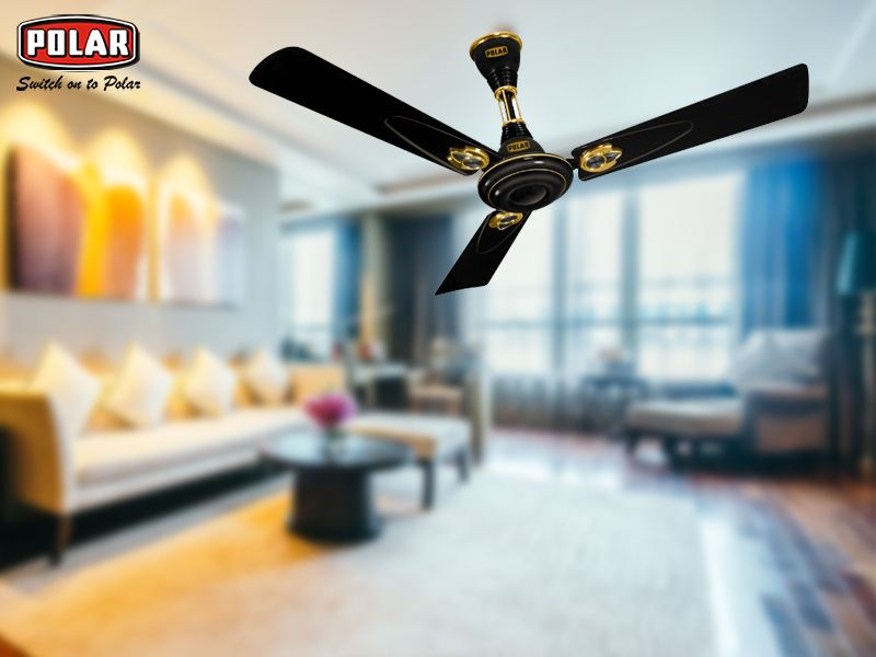Most Of The People Choose To Buy Ceiling Fan Online Or From The