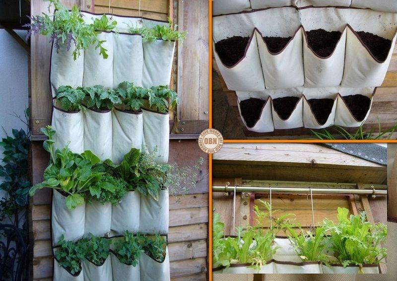 diy vertical strawberry planter   DIY Shoe Storage Vertical Planter