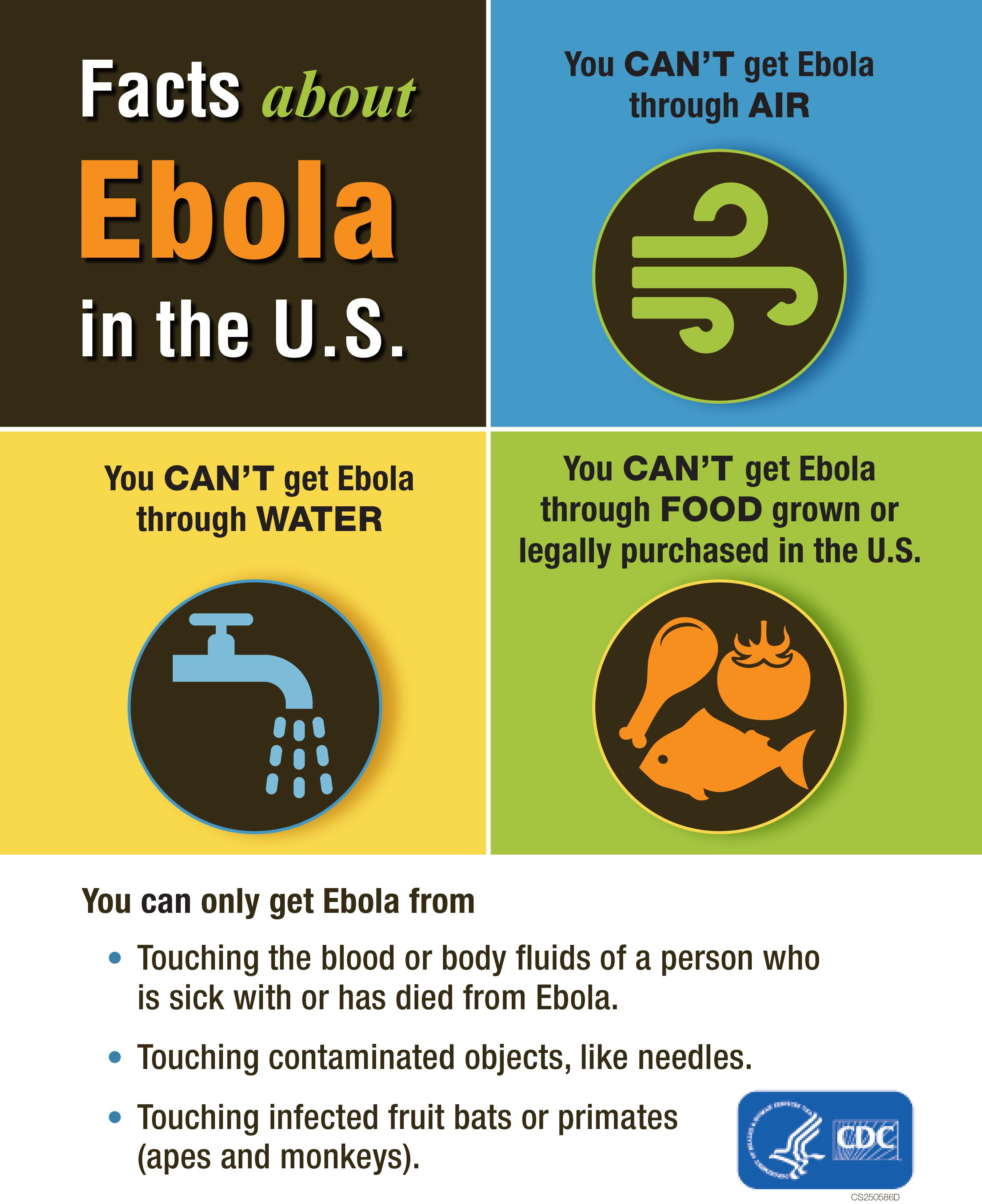 Facts about Ebola in the United States from the Centers for Disease Control and Prevention.