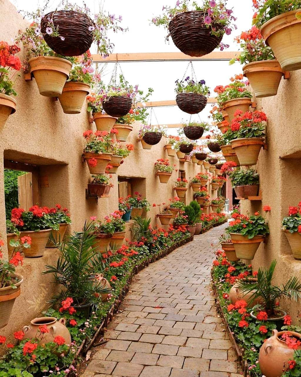 This Is An Alley On Ahmadabad Street In Mashhad Perhaps The Most Beautiful Alley In The World کوچه ای در احمدآباد مشه Iran Travel Plants Hanging Garden