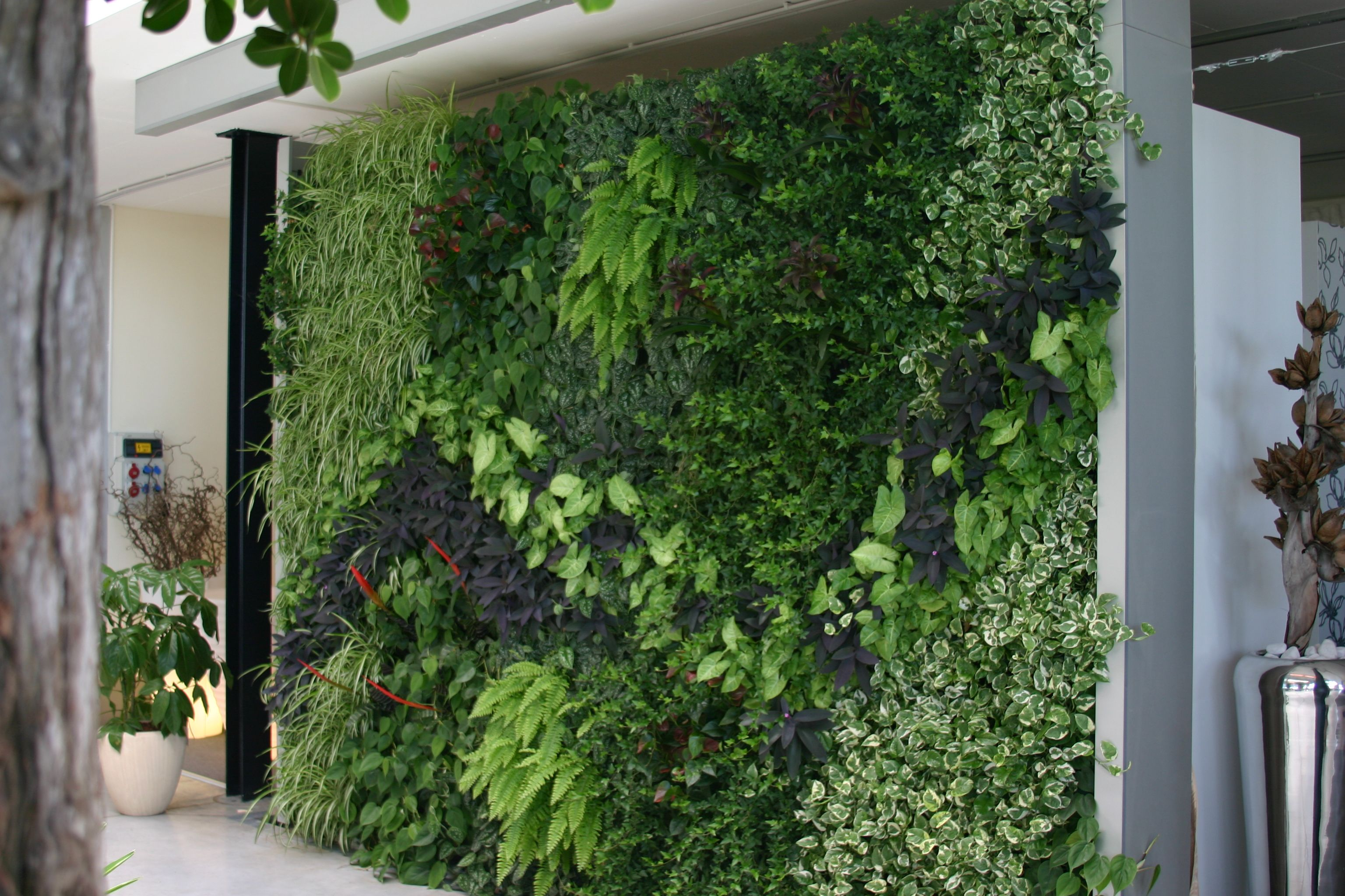 Green air can create living walls in auckland for for Living walls vertical gardens