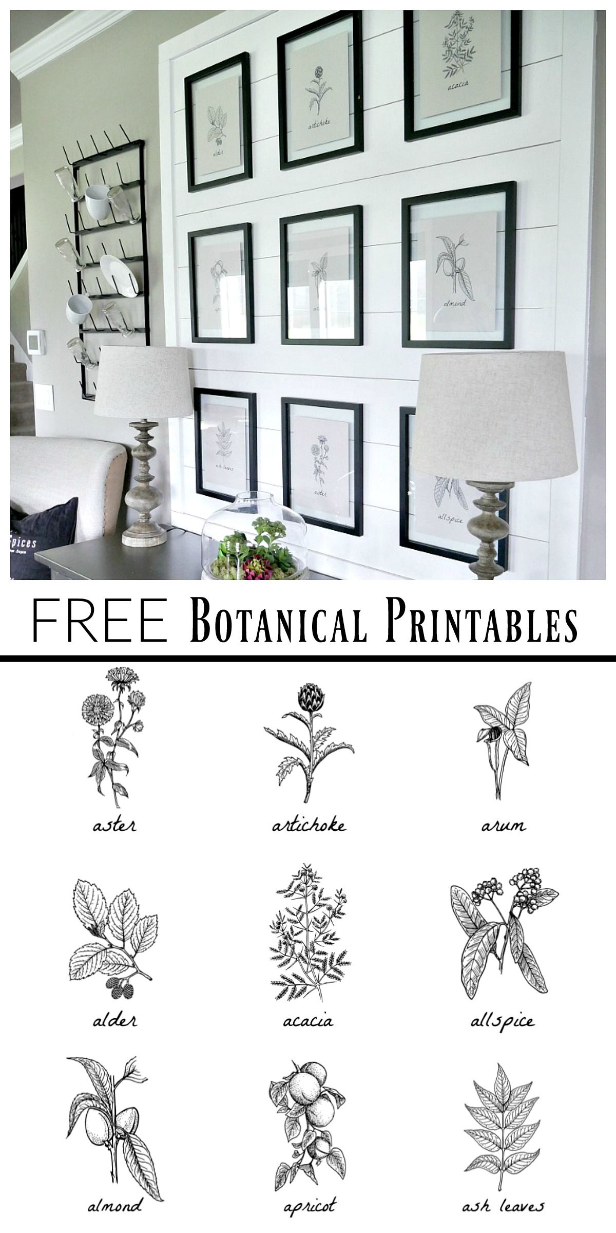 free botanical prints bloggers 39 best diy ideas pinterest deko wanddeko und einrichtungsideen. Black Bedroom Furniture Sets. Home Design Ideas