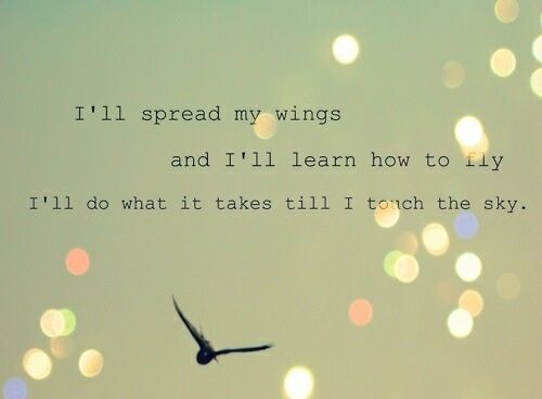 free as a bird quotes - Google Search | Inspirational Thoughts ...