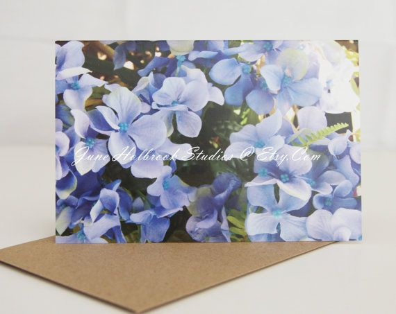 Blue Plumbago Fine Art Photography Flowers  by JuneHolbrookStudios