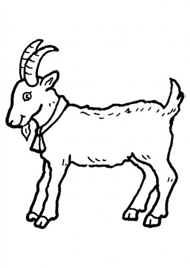 Free Printable Goat Coloring Pages For Kids Animal Templates Animal Coloring Pages Butterfly Coloring Page