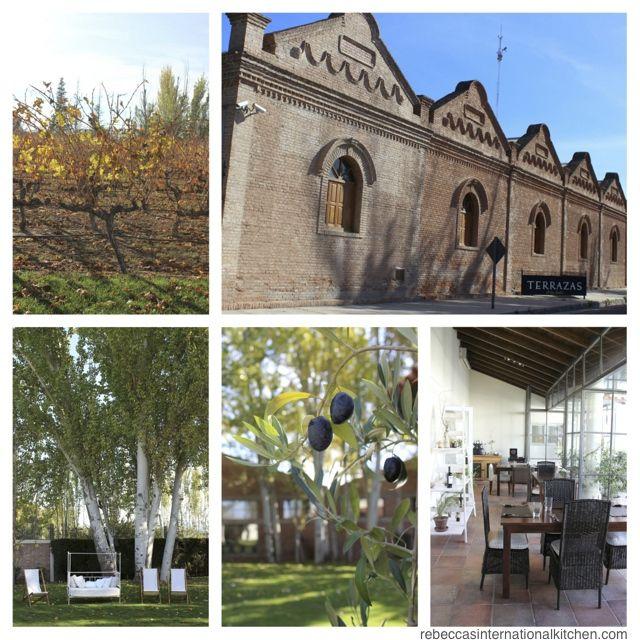 Mendoza S Best Architecture And Landscaping Terrazas De Los Andes Mendoza Argentina Mendoza Amazing Architecture