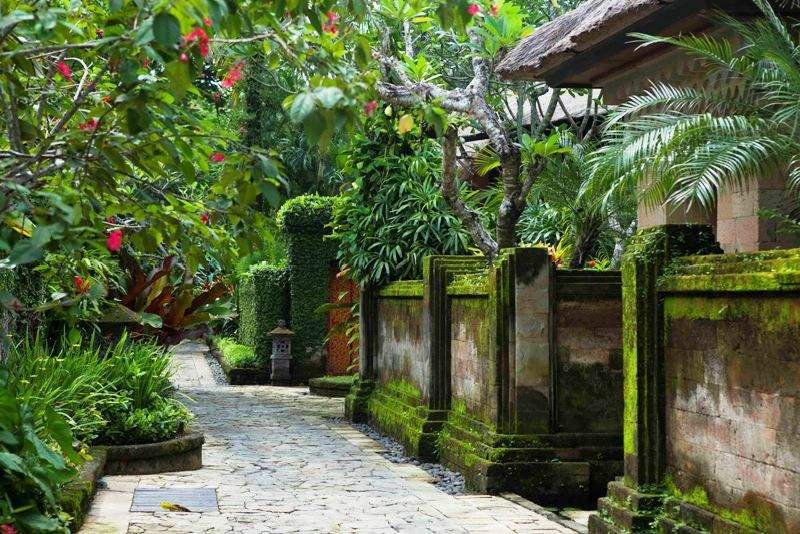 Bali is undoubtedly one of the most beautiful islands in the world ...