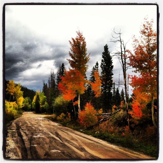 Beautiful fall colors and Aspen trees in #WinterPark #Colorado