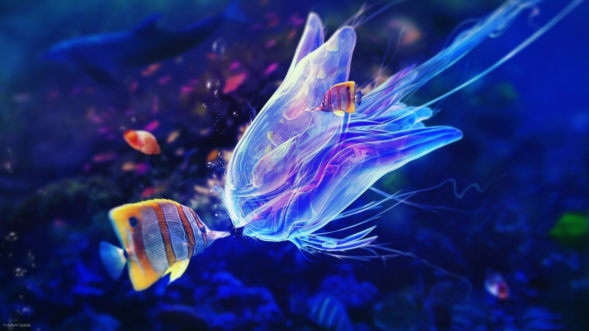 Underwater 1080p Wallpaper | Cool craft stuff | Pinterest ...