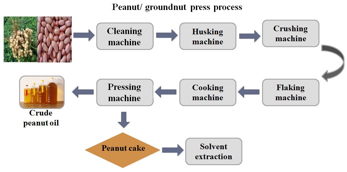 manufacture of Peanut/groundnut oil press production line