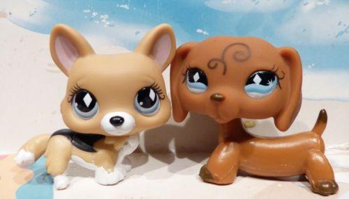 Littlest-Pet-Shop-640-DOG-DACHSHUND-639-CORGI-diamond-eyes-LPS-RARE