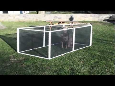 Extend A Pen The Amazing Pet Fence As Seen On Tv Youtube Rv