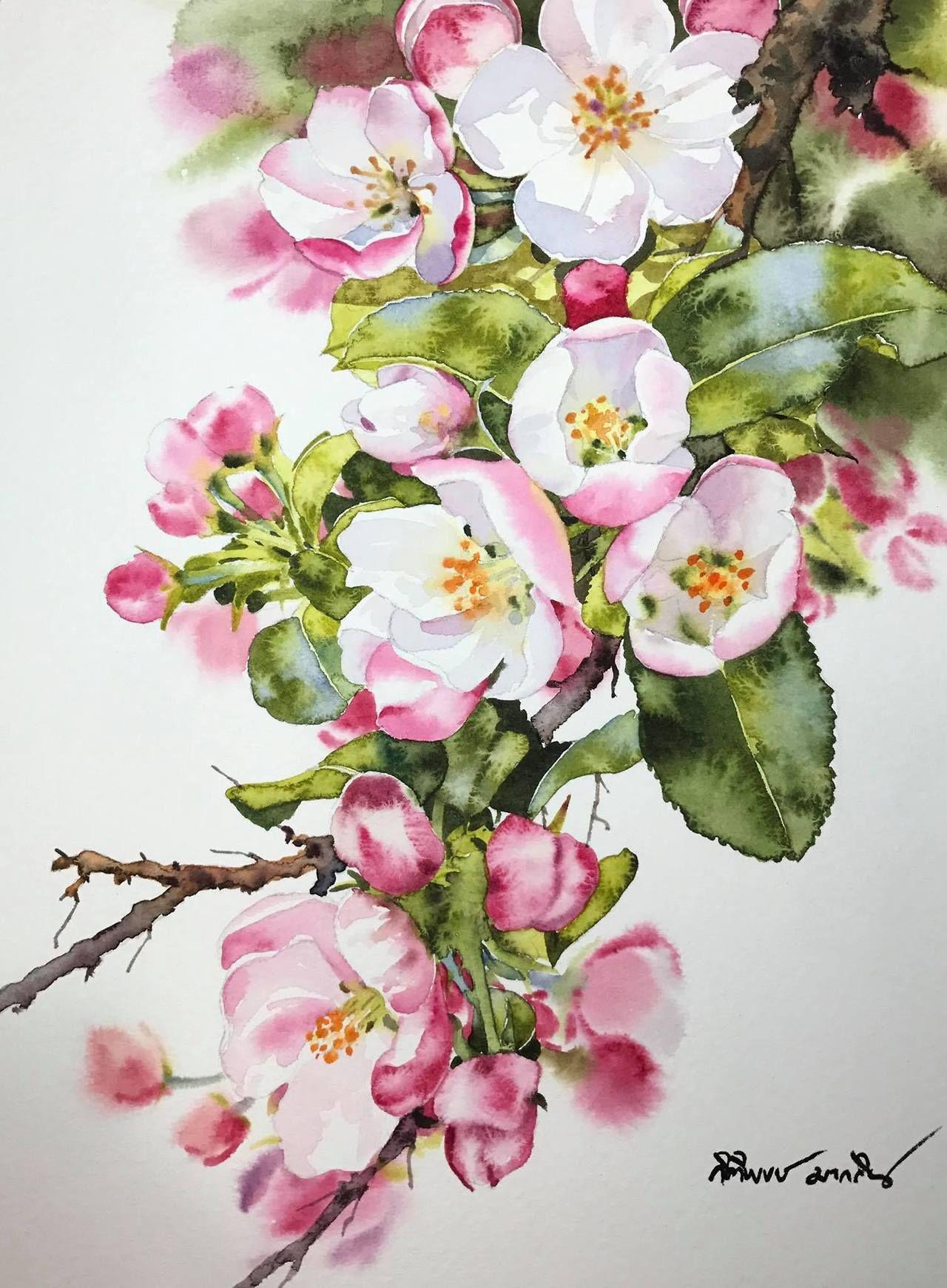 Tu Recepcja Watercolors By Kitipong Maksin An Artist From