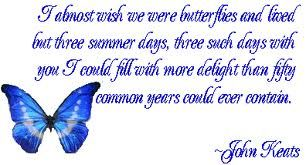 butterflies quotes - Google Search