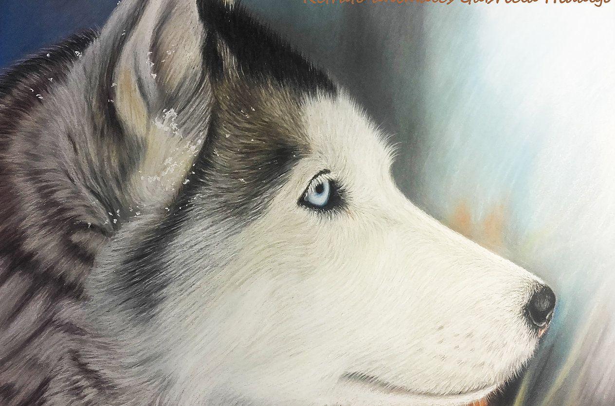 Retratos de mascotas y animales por encargo. Un regalo especial ...