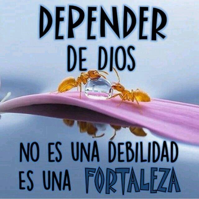 Refrescante (@refrescante_90) | Twitter