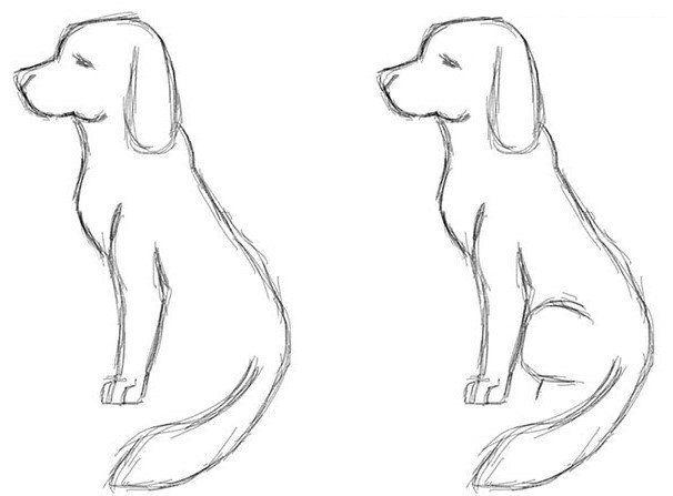 Auf Diese Seite Erkenne Sie Wie Kann Man Selber Sehr Schnell Einen Hund Einfach Zeichnen Die Anleitung Ist Einfach Zeichnen Hund Einfach Zeichnen Hund Malen