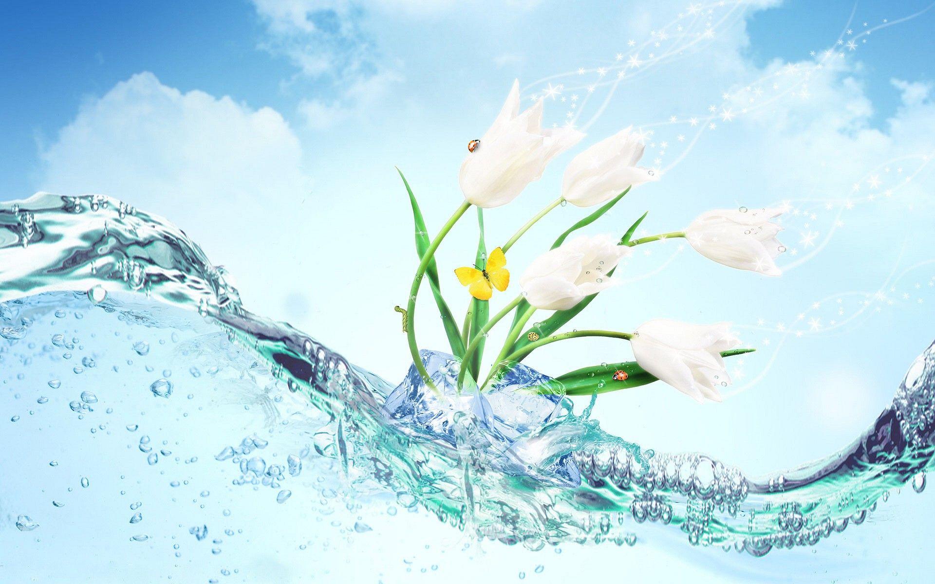 Fresh Flowers Beautiful Flowers Wallpapers Best Flower Wallpaper Beautiful Wallpaper Hd