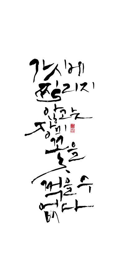 calligraphy_가시에 찔리지 않고는 장미꽃을 꺾을 수 없다.   _필레이