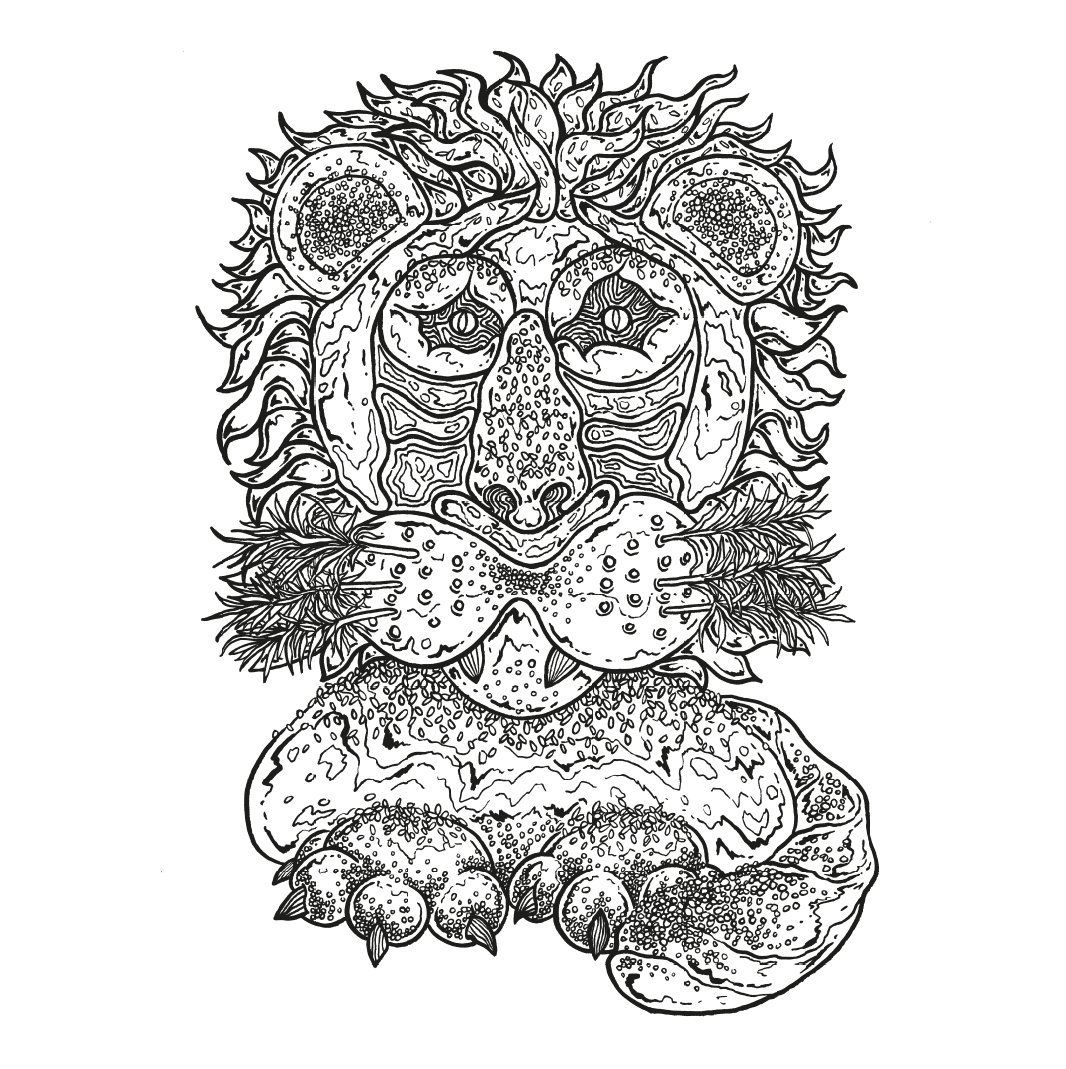 One Of Our Baking Highlights Was Pauls Bread Lion Now You Can Colour In His Maginificent Creation The Great British Bake Off Colouring Book
