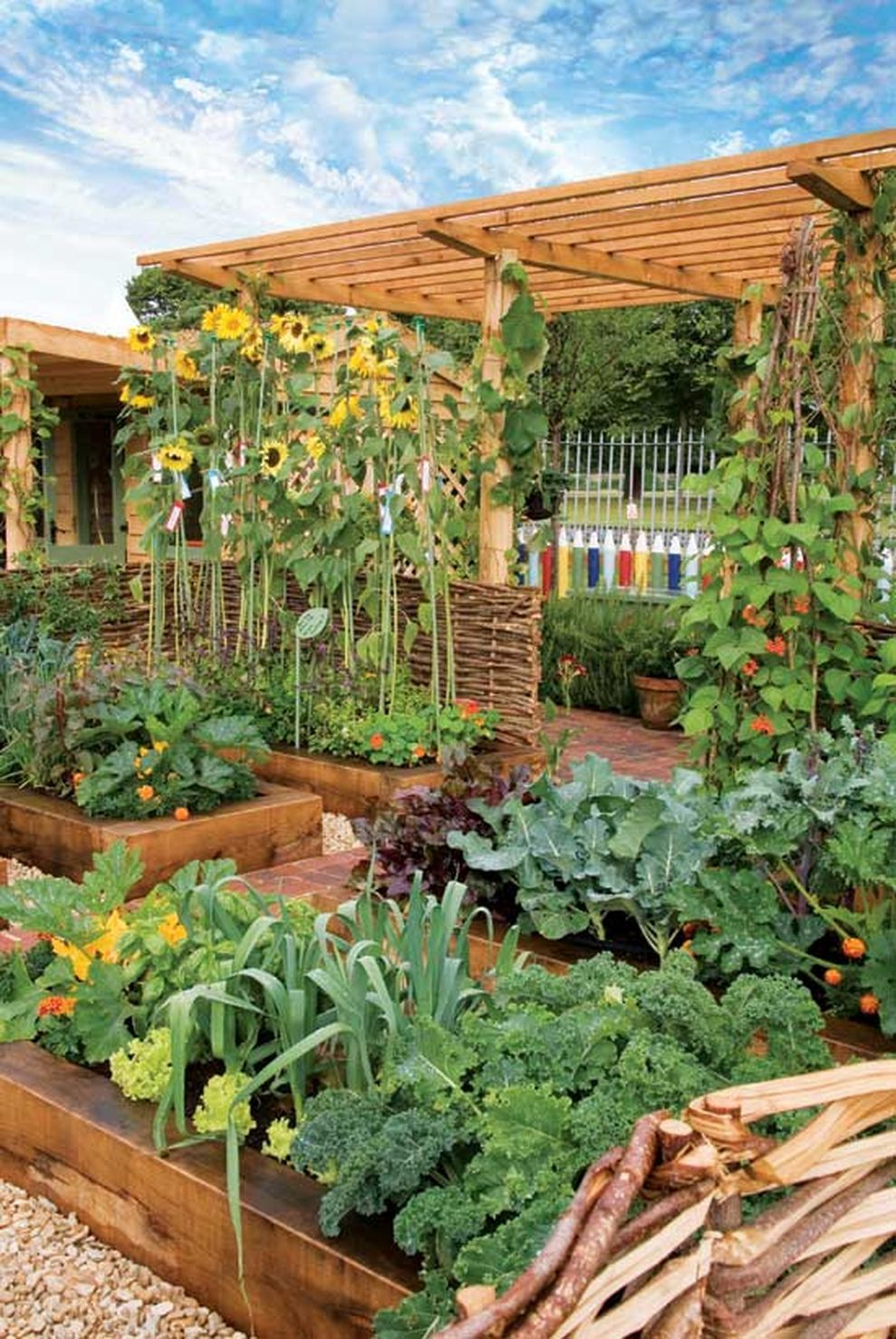 Vegetable garden design   Affordable Backyard Vegetable Garden Designs Ideas  How Does