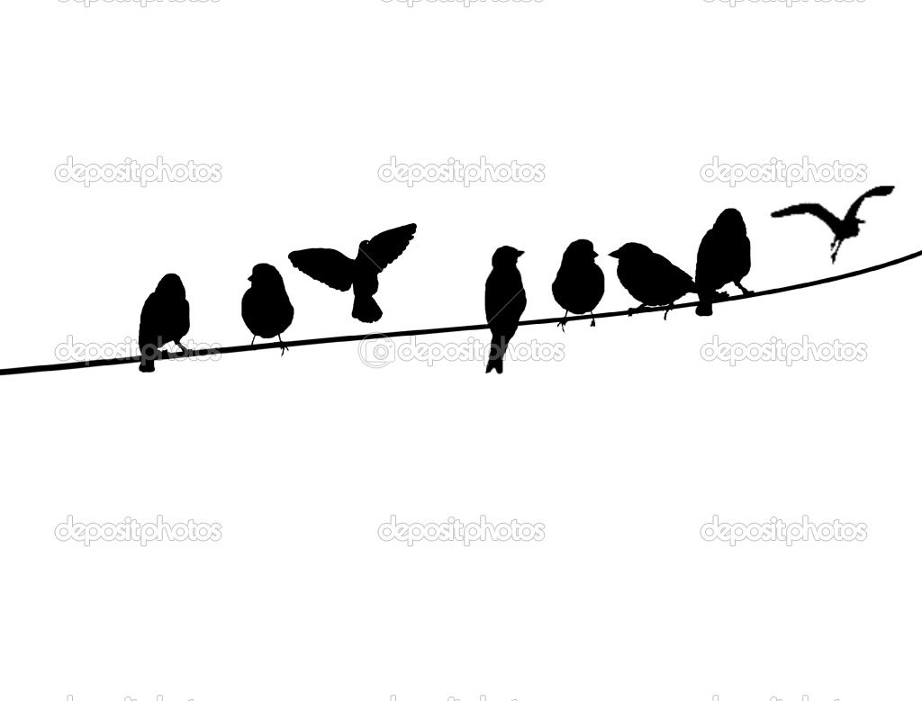 Bird on a wire template - photo#30