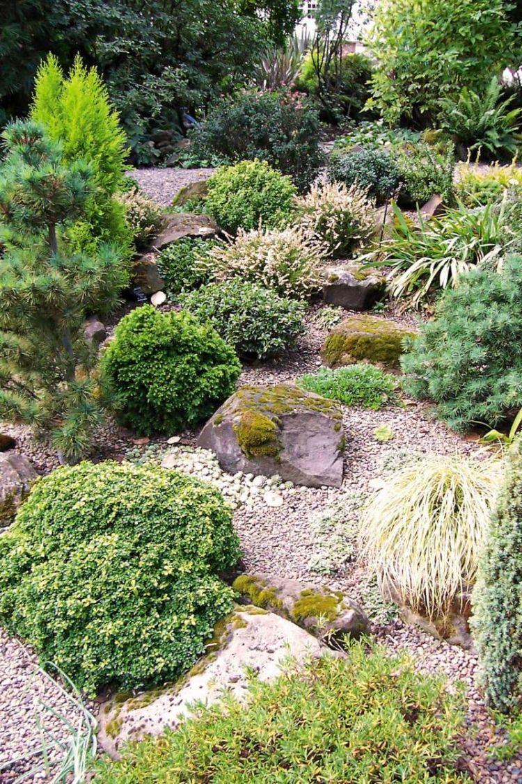 Steingarten Anlegen Gartengestaltung Kies  Splitt Gestein Strauch Gras Bodendecker Trocken
