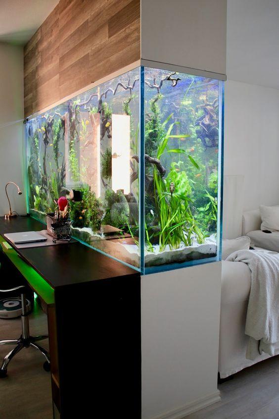 15 brilliant room divider ideas for living room - Pecera de pared ...