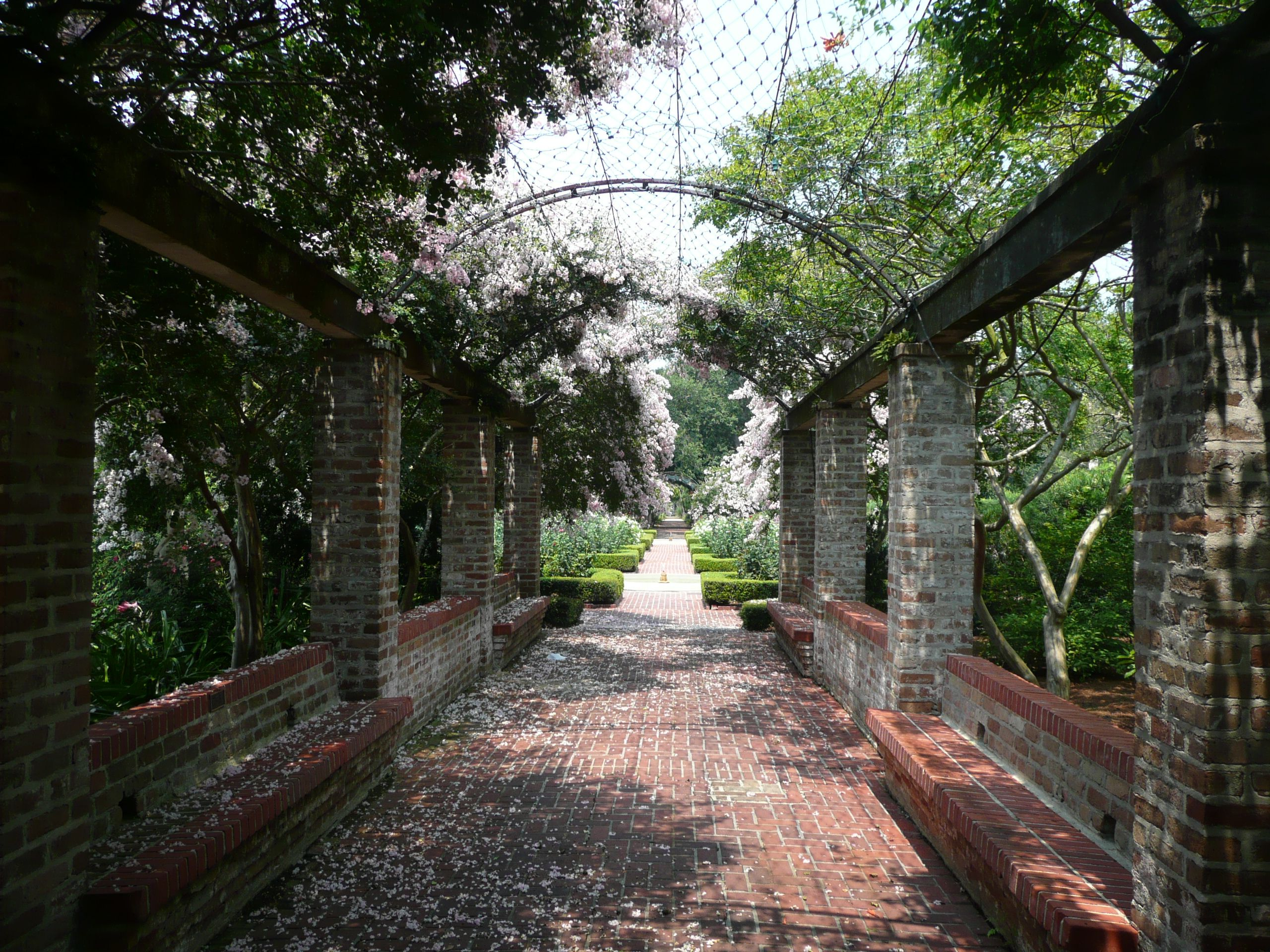 0455bda38fd62ee06d6d988d0f65c3fc - City Park Botanical Gardens Plant Sale