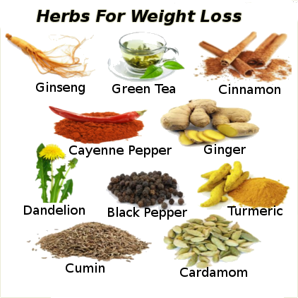 what are the herbs for weight loss
