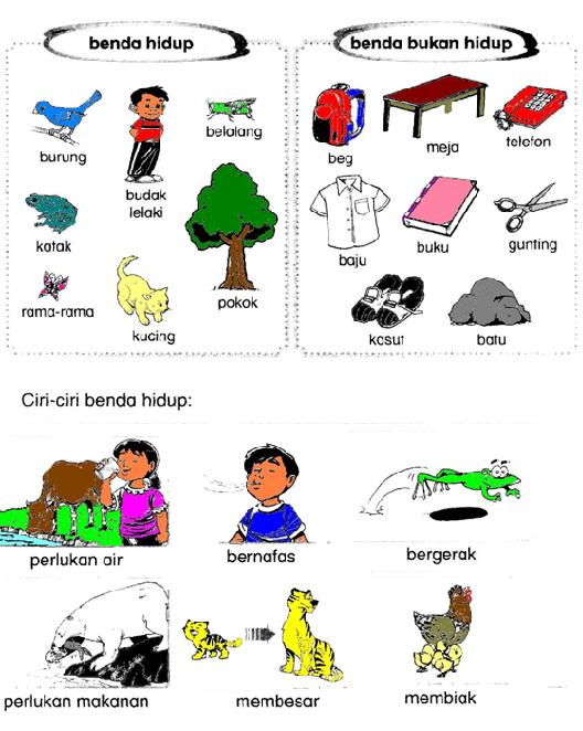 Nota Benda Hidup Dan Benda Bukan Hidup Yahoo Image Search Results Science Activities Activities Image