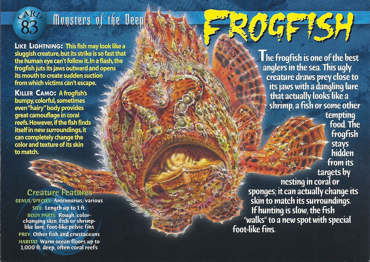 Facts about Frogfish