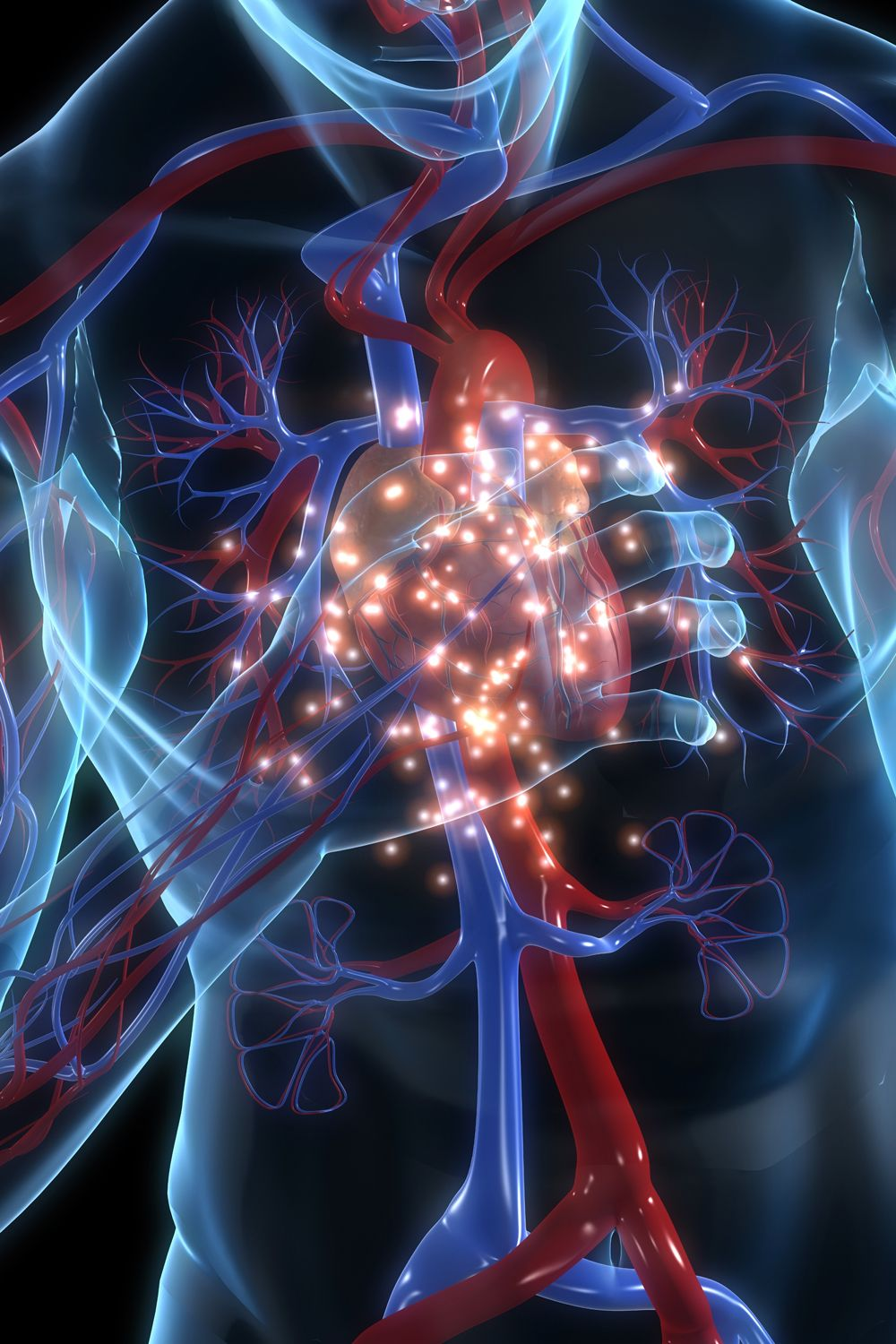 Cardiologist Reveals 4 Simple Ways To Improve Heart Health Heart Health Heart Health Health